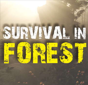 скачать Survival in Forest на android