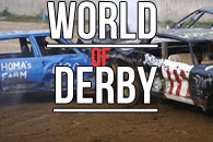 World of Derby на android