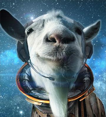 Симулятор козла в космосе
