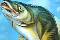 Зимняя рыбалка на android