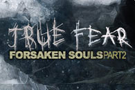 скачать True Fear: Forsaken Souls Часть 2 на android